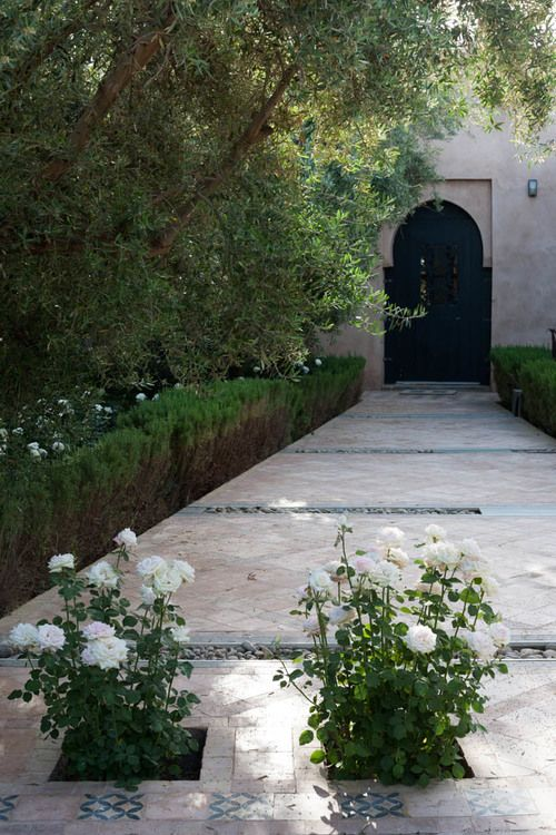 124 best images about Peacock Pavilions, Marrakech Morocco ...