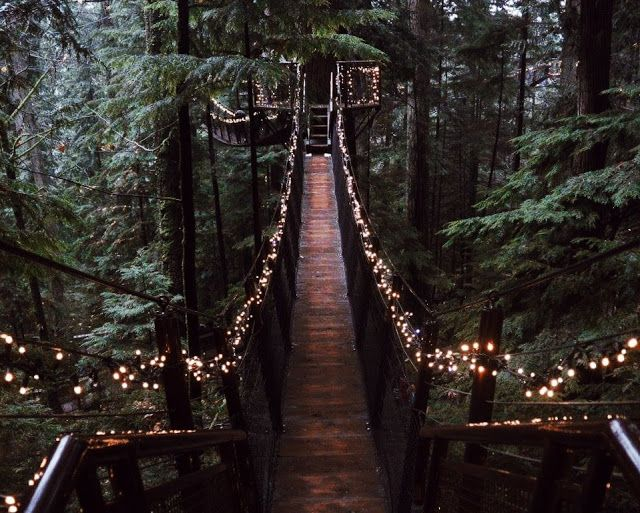 Vancouver: Capilano Suspension Bridge Park