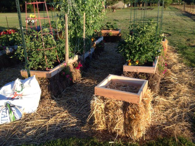 Frame For My Small Bale Straw Bale Garden Pinterest Frames