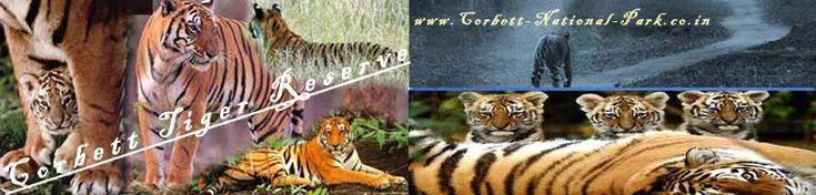 Packages for Corbett National Park