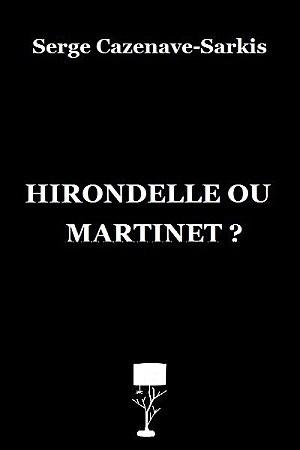 """Critique d'""""Hirondelle ou martinet"""" par Pierrick sur le blog Le souffle numérique"""