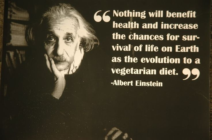 """Albert Einstein became a vegetarian towards the end of his of life. He argued that, """"the vegetarian manner of living by its purely physical effect on the human temperament would most beneficially influence the lot of mankind"""""""