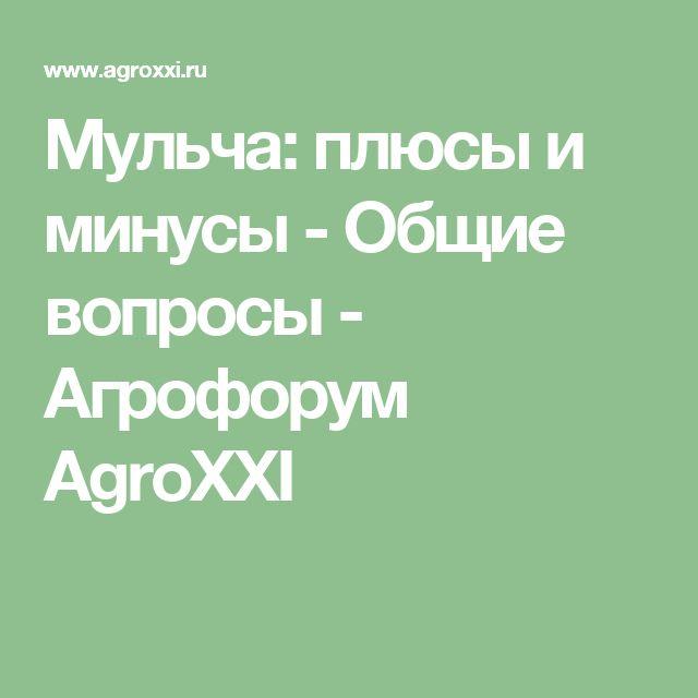 Мульча: плюсы и минусы - Общие вопросы - Агрофорум AgroXXI