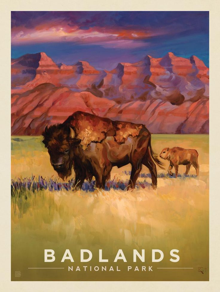Anderson Design Group – The Kai Carpenter Collection – Badlands National Park: Living the Good Life