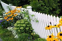 Fencing Costs | Average Cost To Install A New Fence