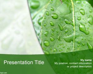 Natural Sciences PowerPoint template background with a green leave image