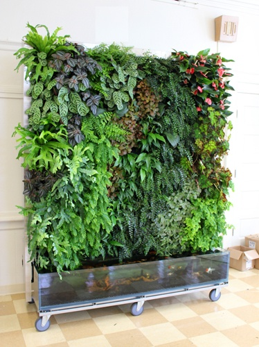 Eco Walls will be building the green wall for the show house terrace.  So excited to have them join us!