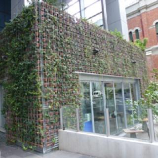 Greenhouse Bar, Perth