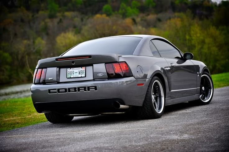 2003 Cobra best mustang I've ever owned!!