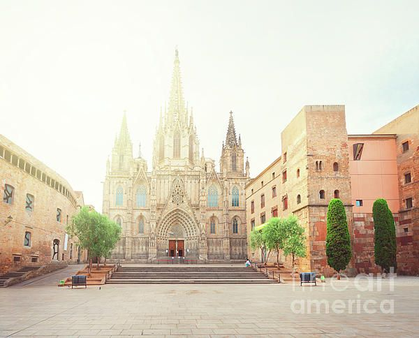 Square with cathedral church with sunlight in Gotic quarter of Barcelona, Spain by Anastasy Yarmolovich