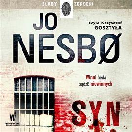 """Jo Nesbø, """"Syn"""", przeł. Iwona Zimnicka, Wydawnictwo Dolnośląskie, Wrocław 2014. Jedna płyta CD, 18 godz. 31 min. Czyta Krzysztof Gosztyła."""