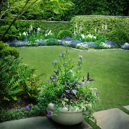 Hulsey Garden - Greens, dark purple/black lavender, blur & variegated leaves. Cut lawn, gray stone edging & a bed of blue, purple, & white. Backdrop of green wall, boxwood, & spikes of white & lupines.