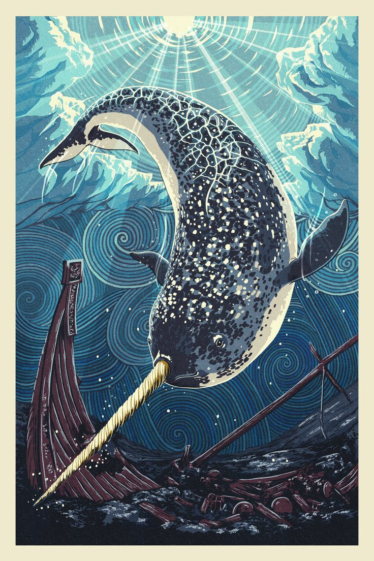 Narwhal by Chronoperates.deviantart.com on @deviantART
