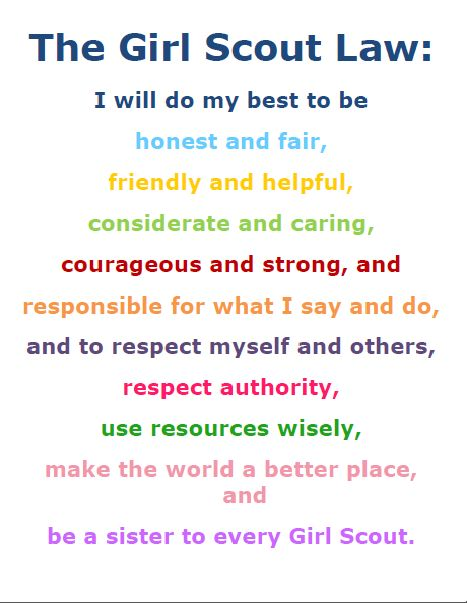 154 best images about Girl Scouts - All Levels on Pinterest ...