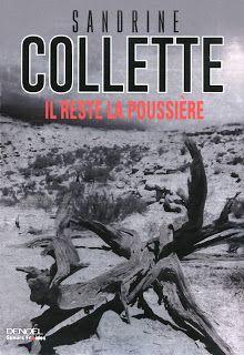 l'instant des lecteurs: « Il reste de la poussière » - Sandrine COLLETTE