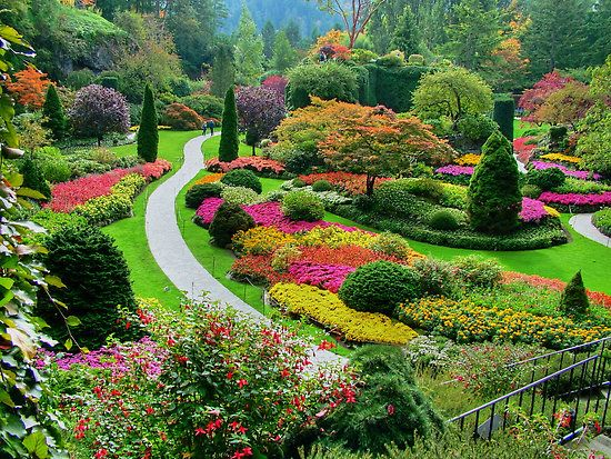 Butchart Gardens Victoria B C Us Trip 2015 Pinterest Gardens Beautiful And In The Garden