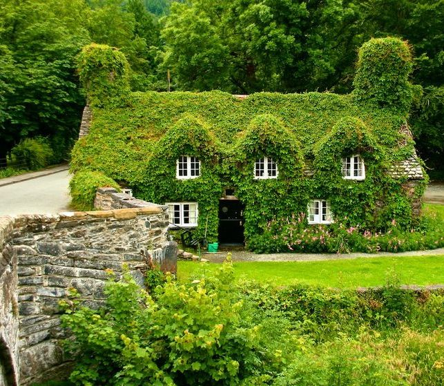 582 best wee welsh corners images on pinterest welsh - The best house in wales ...