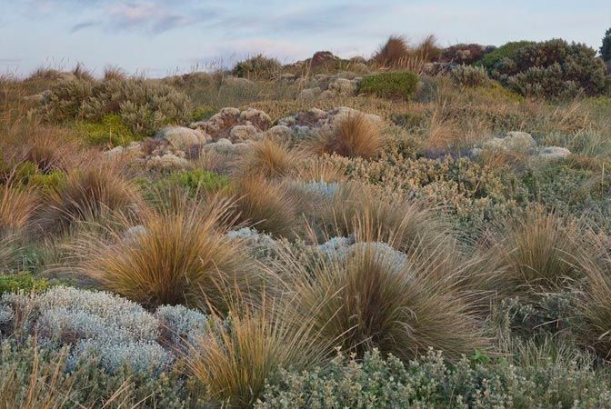 Fiona Brockhoff Design » Natural landscapes that inspire design