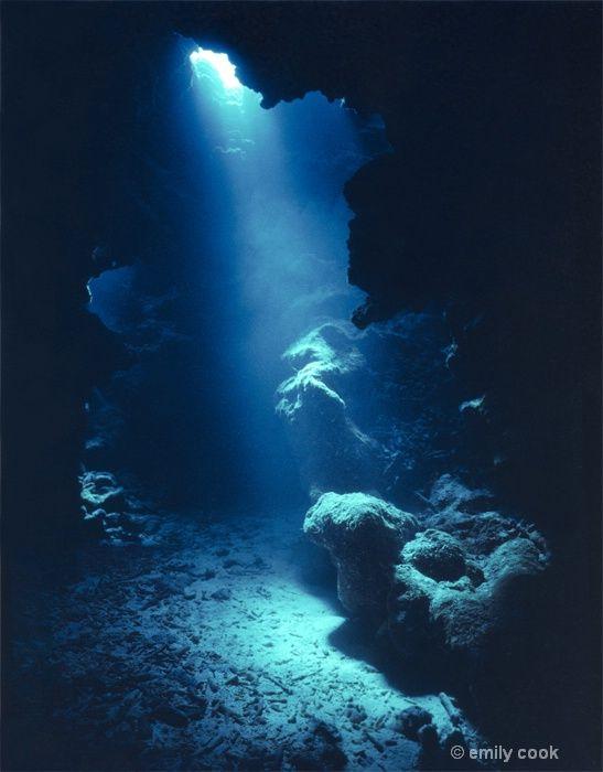 Cursed to the Sea - Dark Depths - Page 1 - Wattpad