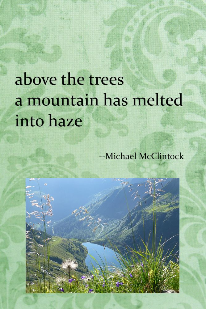 Haiku poem: above the trees-- by Michael McClintock