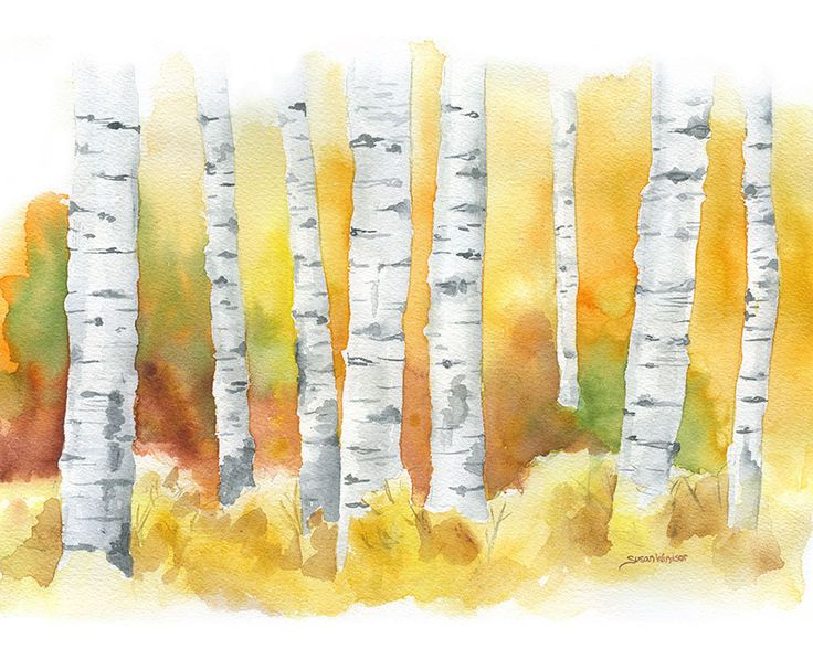 Birch Trees in the Fall watercolor painting print.