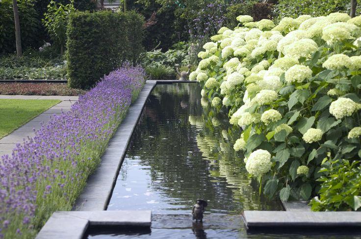 Tuin tuinontwerp tuinarchitect hovenier hoveniersbedrijf for Moderne vijvers foto s