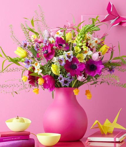 #Blumen  Milchstern, Goldglöckchen und Hirtentäschel