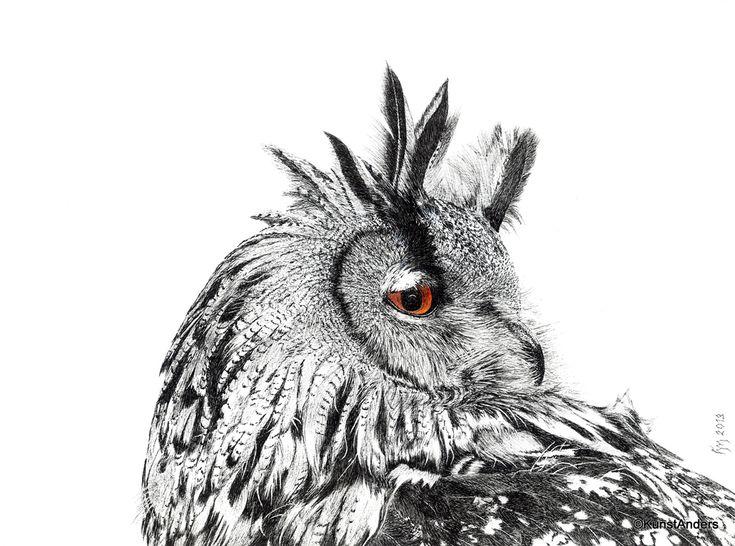 Hanneke Messelink-Anders. Europese Oehoe. De oehoe komt voor in grote delen van Europa (ook in Nederland) en jaagt voornamelijk in de schemering. Aan de kleur van de ogen kun je over het algemeen zien of uilen overdag actief zijn (gele ogen), 's nachts (zwartbruine ogen) of in de schemering (oranje ogen), zoals bij de oehoe.