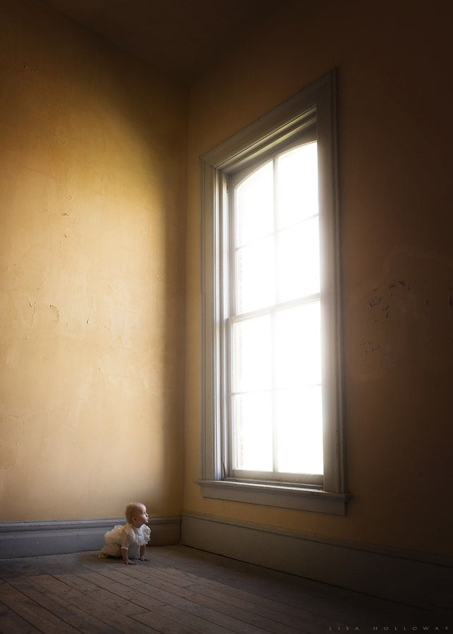 The Window by Lisa Holloway #xemtvhay