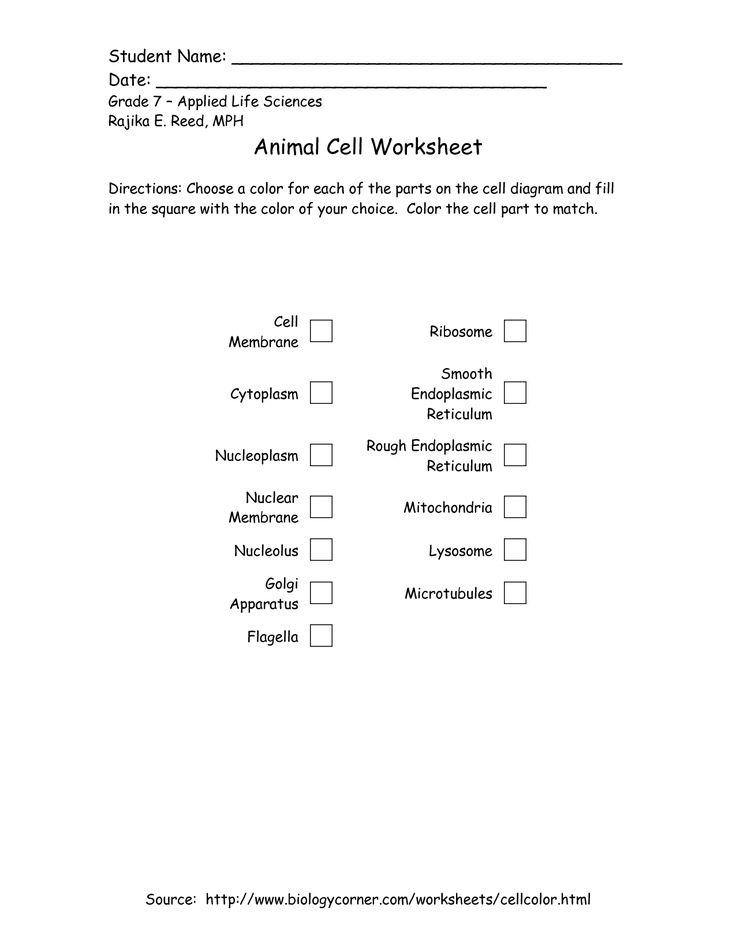 Worksheets 7th Grade Life Science Worksheets 112 best images about seventh grade printables on pinterest 7th printable plant and animal cell applied life sciences rajika e