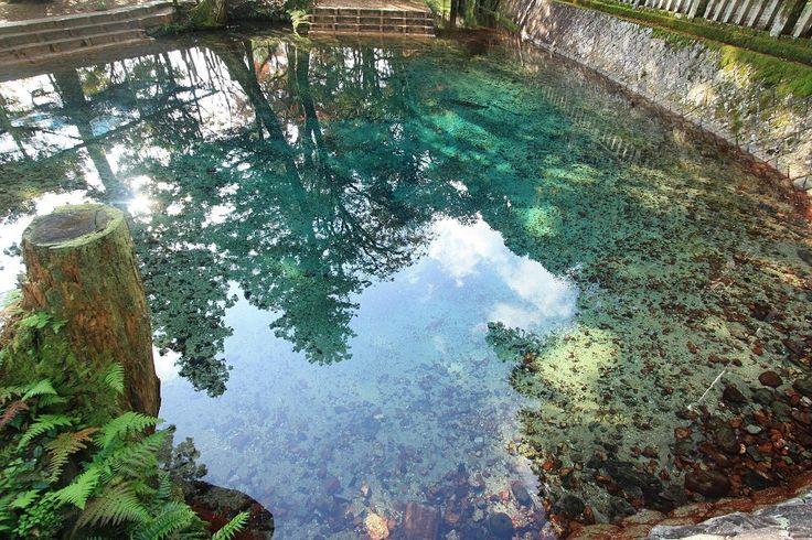 日本名水百選の一つ!目を見張るほどの透明度を誇る湧き水