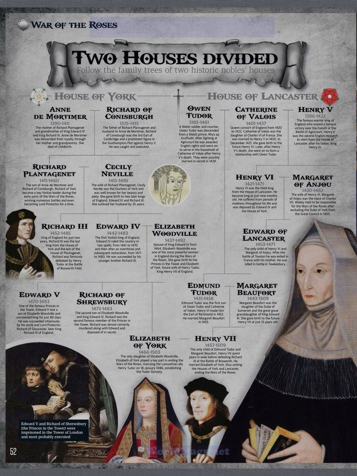 Tudor History from the beginning (shown here) through Henry VIII and his six wives up until Queen Elizabeth I.