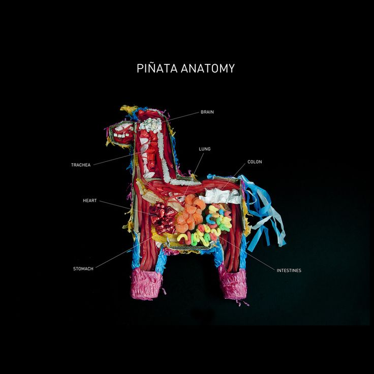 Piñata Anatomy - Carmichael Collective
