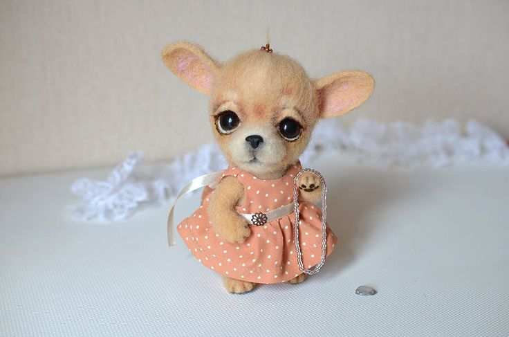 Needle felted chihuahua puppy. Little felt dog. Sweet animal. Funny toy. Birthday gift. by Fenekdolls on Etsy https://www.etsy.com/listing/230243109/needle-felted-chihuahua-puppy-little