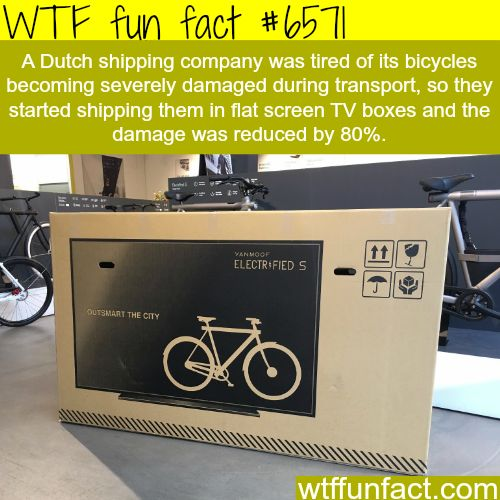 Dutch company ships bikes in flat screen TV boxes - WTF fun facts