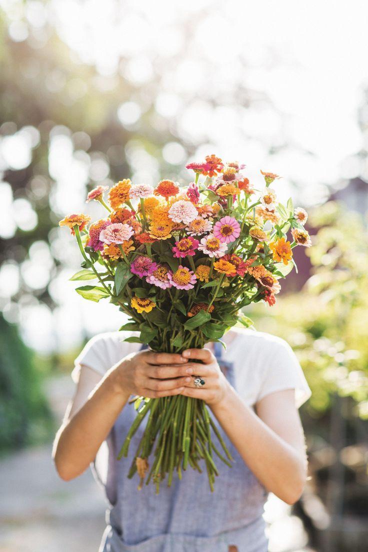 So züchten Sie einen Schnittblumengarten, der so beeindruckend ist wie die Floret Farm
