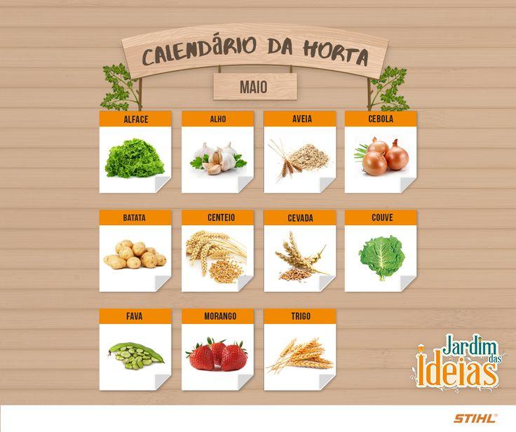 Sabe o que combina com o início do mês de maio? O nosso calendário de frutas, verduras e legumes para plantar neste período. Confira e já escolha as espécies que vão ganhar um espaço especial na sua horta a partir deste mês!