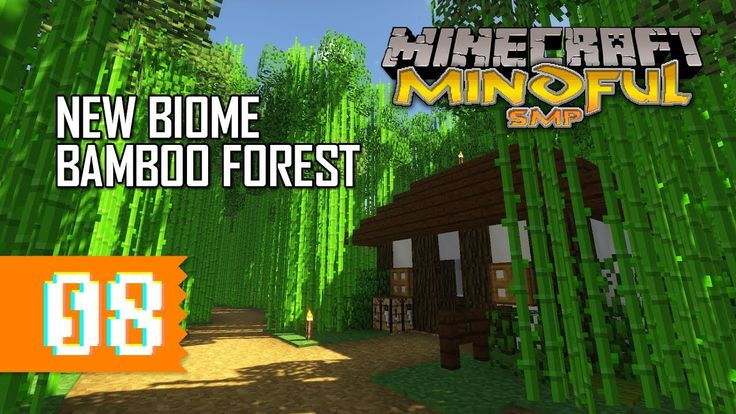 New Bamboo Forest Biome!! | #8 | Mindful SMP | Minecraft Multiplayer || We finished our new custom biome! We continue with our asian theme and created a imersive bamboo forest with a little shrine for the forest goddess and a coz... https://www.youtube.com/watch?v=f2ooOWSCq0E
