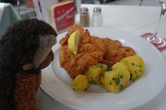 Apen matkat: Wien osa 10, maisemia tornista, lounaaksi jäätelöä, illalliseksi Wieninleike