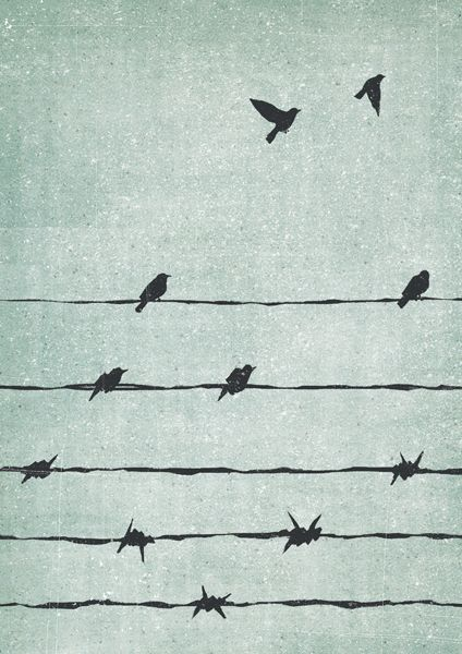 This illustration presents a strong concept through the use of minimalistic and simple drawings. The focus is the relations to the the birds fire off the electric wire. As the viewer's eyes move down towards the bottom of the picture, the visual metaphor of barb wire becomes more apparent.