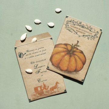 un sachet de graines de citrouille en kraft avec une citrouille en illustration…