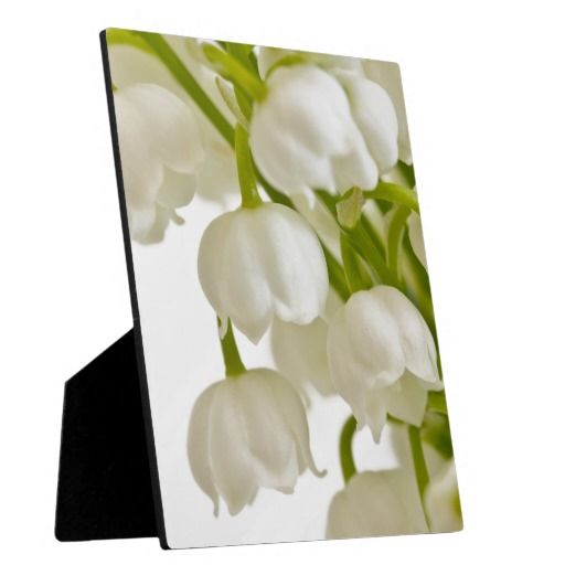 White Lilies Plaques
