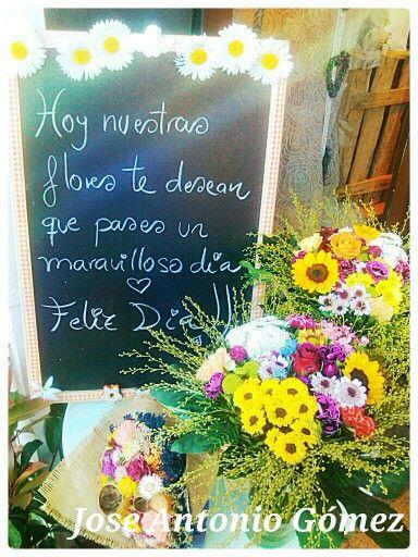 A mi alrededor siempre hay flores...