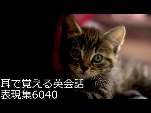 1000の最も一般的な英語のフレーズ - YouTube
