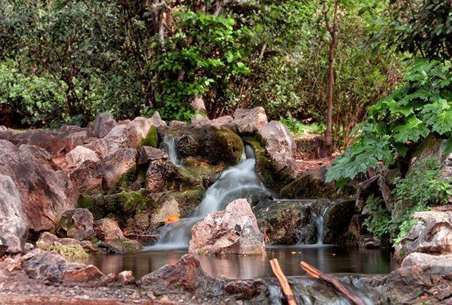 Τρέχει τρέχει τρέχει το νερό. #water #stream #nature #naturephotography #naturelovers #nature_lovers #nature_shooters #nature_greece #garden #athens #athensvoice #eyeofathens