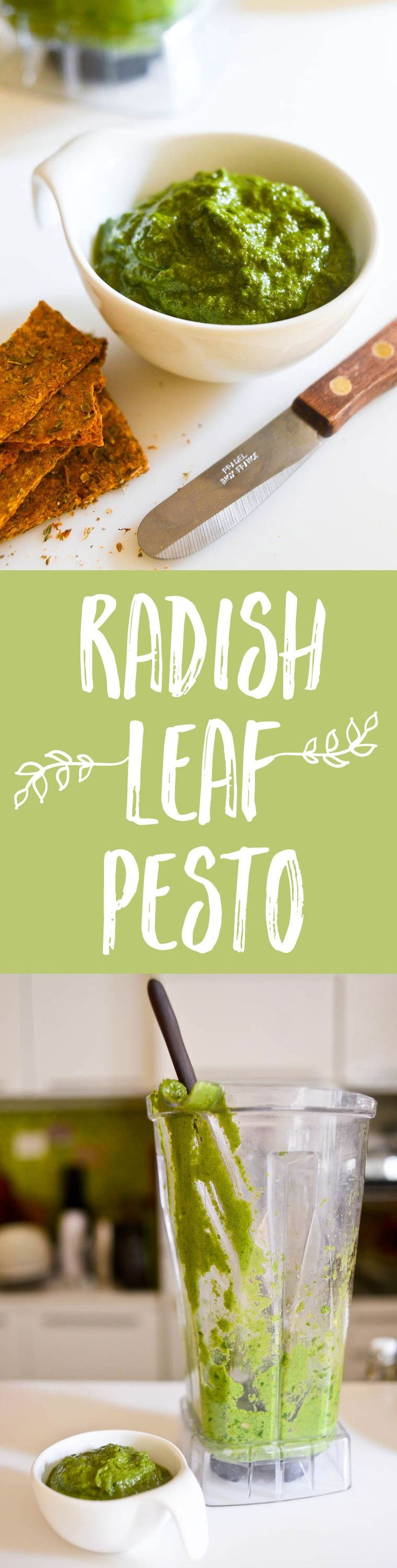 Don't throw out your radish leaves! Turn them into a delicious radish leaf pesto to use in pasta, vegetable tarts, crostini, or with meat and fish.