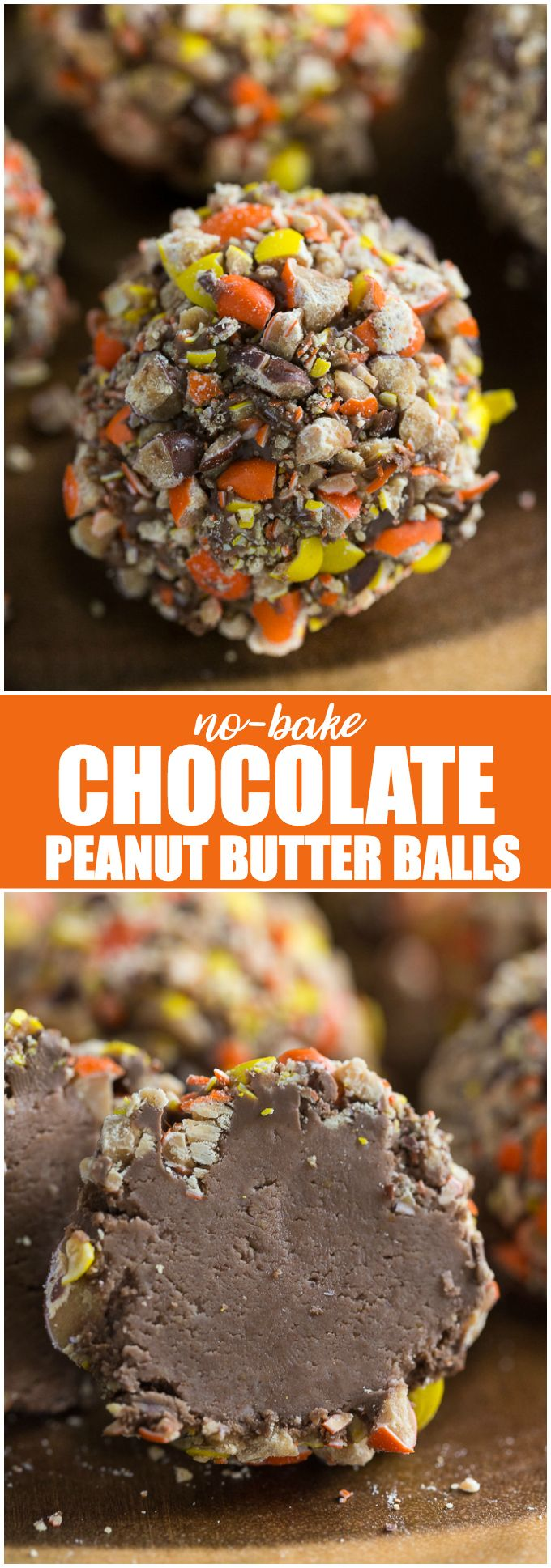 No-Bake Chocolate Peanut Butter Balls - Whip up these decadent treats for your friends and family to share over the holidays. They also make a nice DIY gift!
