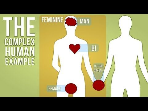Sex Gender Sexuality System