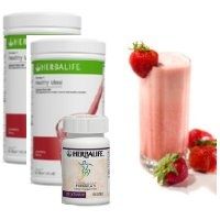 Herbalife Weight Gain Products