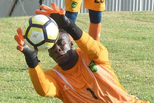 Reggae Boyz face Soca Warriors in key friendly today - Jamaica Observer